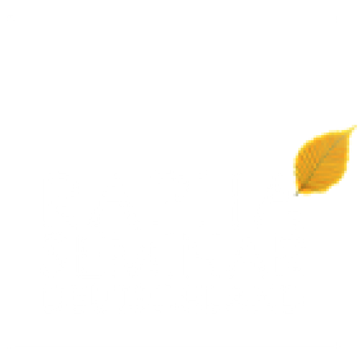 Rapha-Seminar